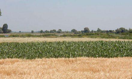 Registrul Agricol Electronic va fi disponibil în Tulcea