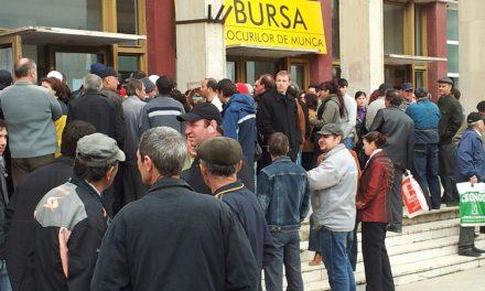 Tendințe negative pe piața muncii din Tulcea