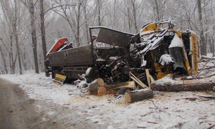 A apăsat acceleraţia şi s-a izbit cu camionul de copacii de pe marginea drumului