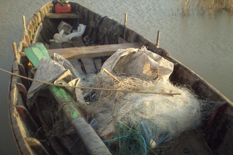 Prohibiţia la pescuit începe pe 1 aprilie