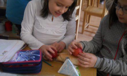 După achitarea prejudiciului, Societatea Deltalact furnizează merele în şcoli şi în acest an