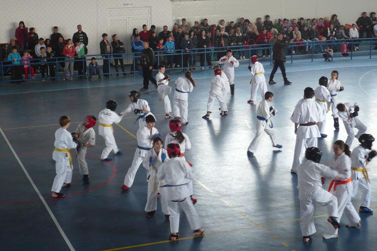 Test de 50 de Kumite cu 100 de karateka