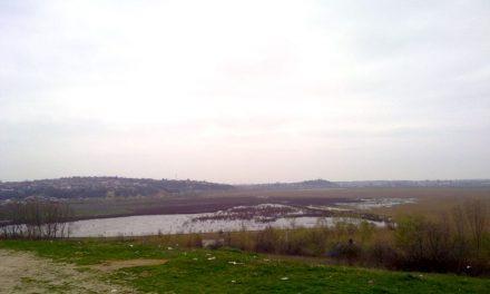Ce se mai aude despre ecologizarea polderului Zaghen