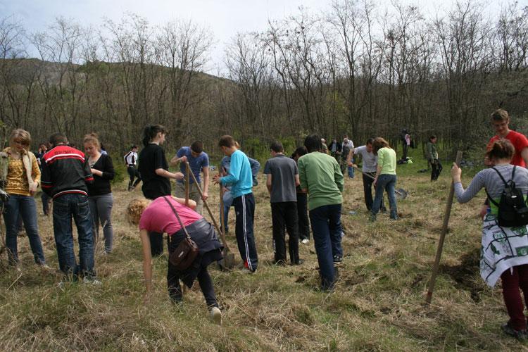 Elevi din Tulcea, la ora de plantat arbori