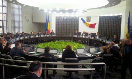 Florenţiu Constantin şi Sofia Chiriac, noii consilieri judeţeni din partea PDL