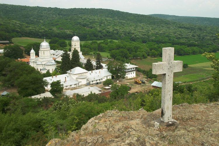 Biserica deține peste 200 de hectare de pădure în Tulcea