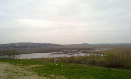 Primăria s-a resemnat: proiectul de ecologizarea Zaghenului – mort şi îngropat în contestaţii