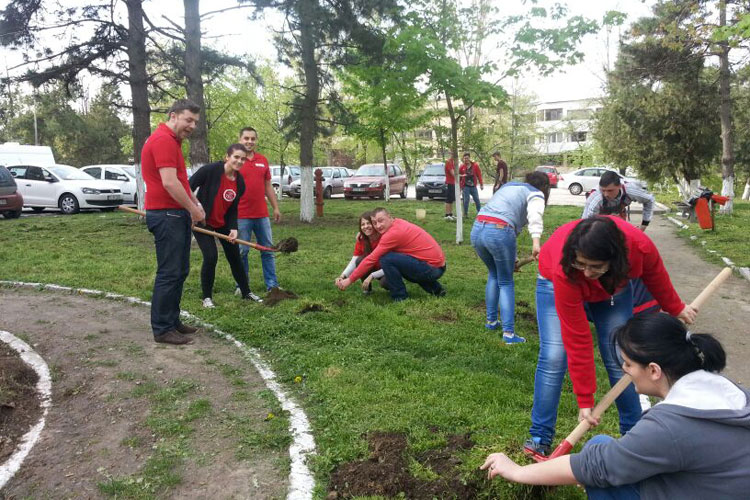 Tinerii social-democraţi au plantat puieţi de tei şi frasin în parcul spitalului judeţean
