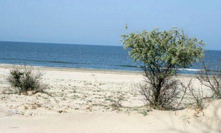 Ultimele plaje sălbatice din Europa, între ignoranţă şi ideal