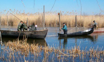 Se vrea revenirea la concesiuni în deltă