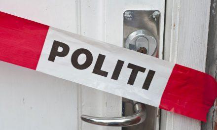 Hoţi tulceni prinşi de poliţiştii danezi cu valizele pline de electronice, argintărie şi bijuterii