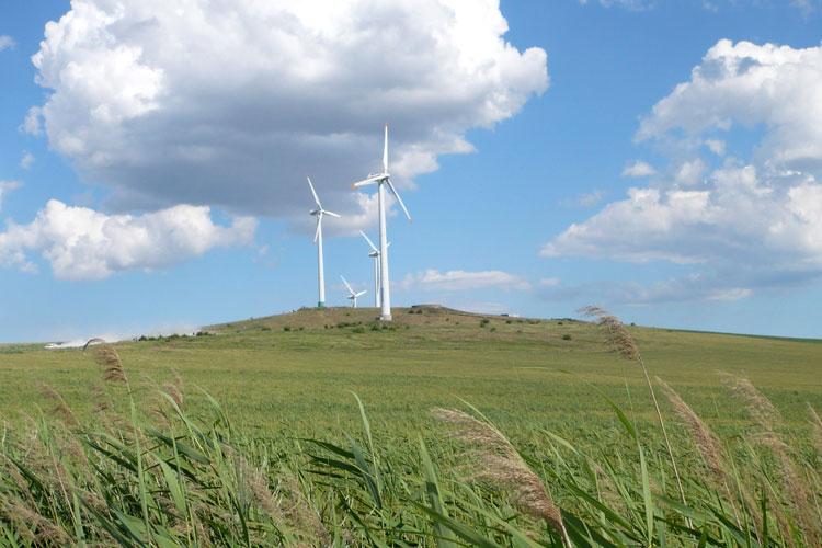 Parcurile eoliene tulcene, cât reactorul nuclearde la Cernavodă