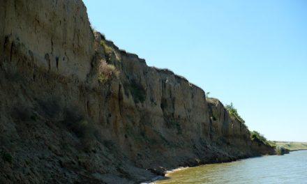 Rămăşiţele unui mamut preistoric, descoperite pe malul Lacului Babadag!