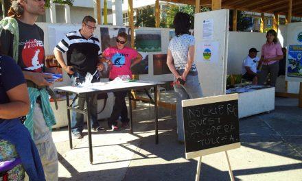 Aventură urbană: concurenţii au căutat sturionii din oraş şi poveştile nescrise ale Tulcei