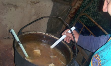 Începând de astăzi, Cel mai bun borş de peşte din deltă, în festival la Crişan!