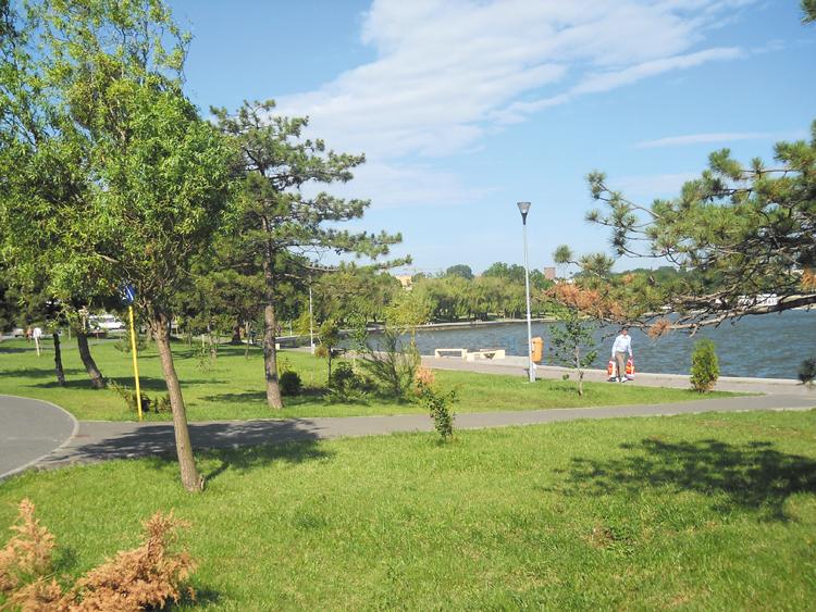 Primăria va amenaja în Parcul Ciuperca un loc special pentru proprietarii de câini