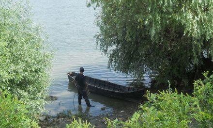 Cadavru recuperat de oamenii legii din apele Dunării, la Sulina