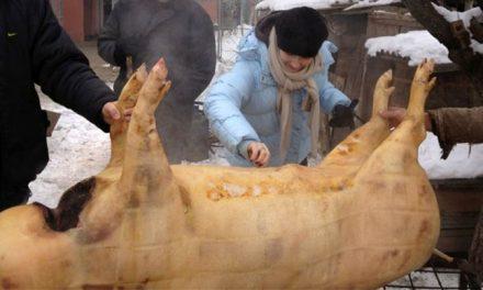 Examinarea cărnii de porc pentru depistarea trichinelozei, obligatorie. Amenda, 2.000 de lei
