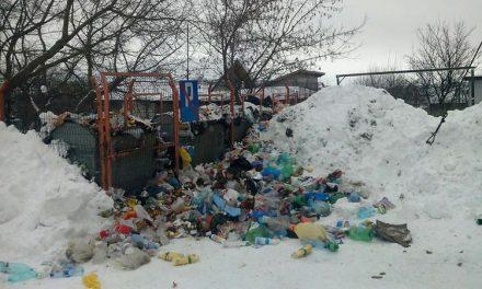 Aproape 1.000 tone de gunoaie, adunate de la gospodăriile din oraş!