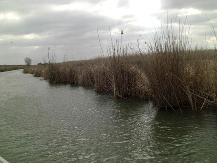 Începe decolmatarea canalului Lipoveni