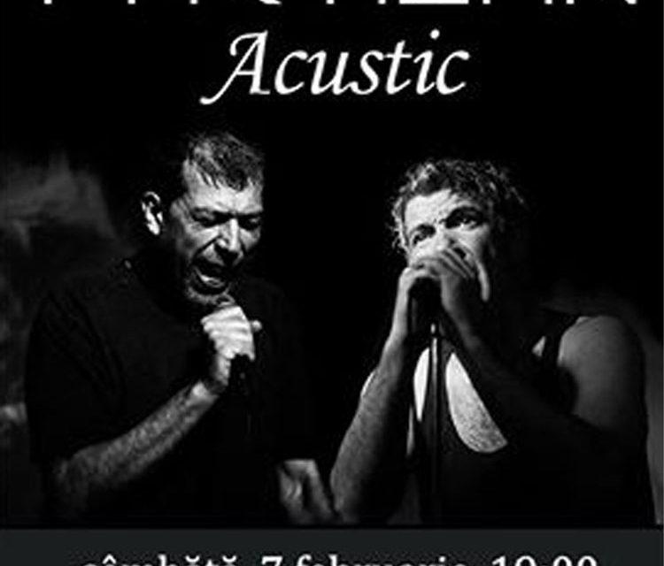 Concert acustic marca Partizan, la Casa Avramide