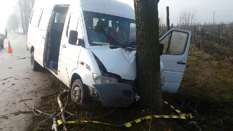 Şapte oameni, răniţi după ce microbuzul cu care se îndreptau spre Tulcea s-a izbit de un copac