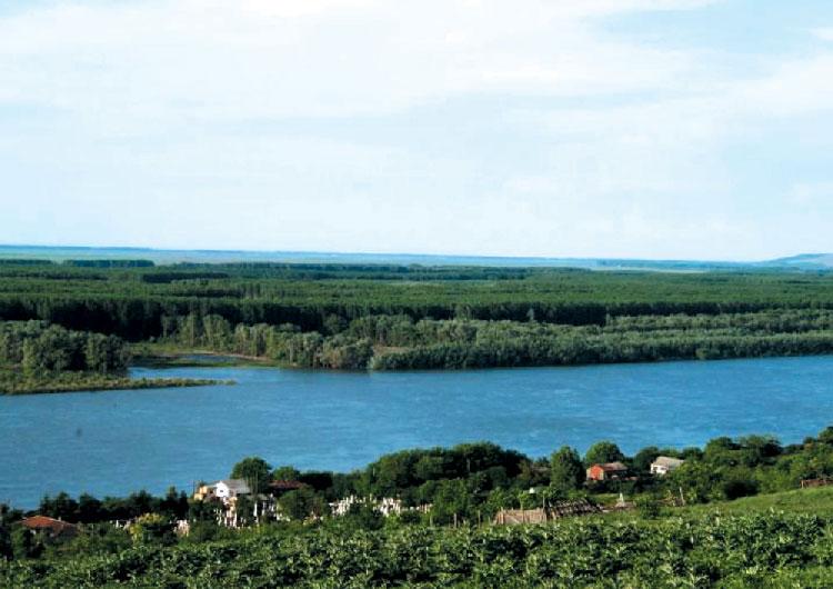 Localnicii din Ostrov, revoltaţi
