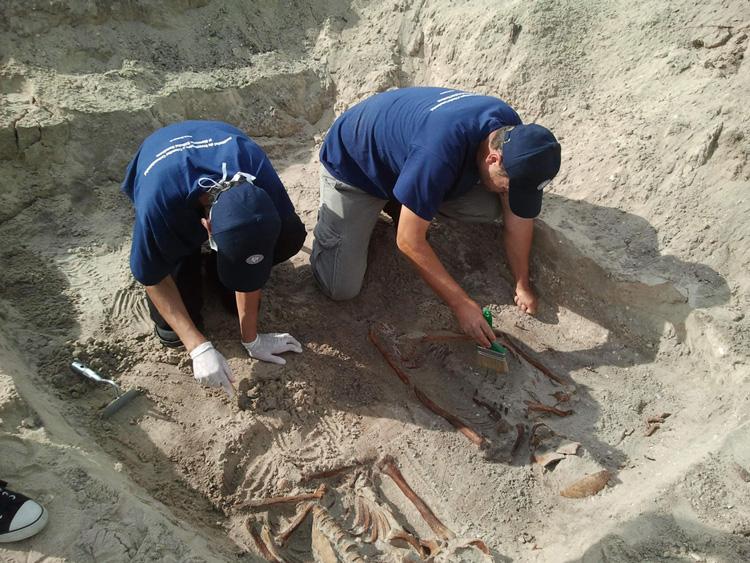 Arheologii continuă săpăturile pentru deshumarea deţinuţilor politici morţiîn lagărul de la Periprava