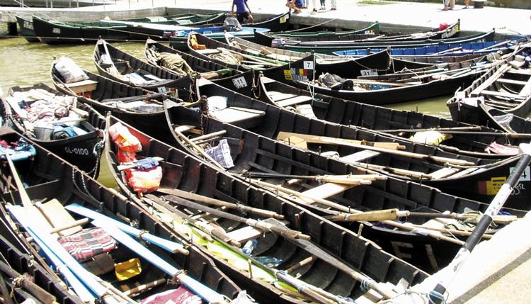 Patronii de pensiuni blochează Dunărea: peste 100   de bărci la protest în Portul Tulcea!