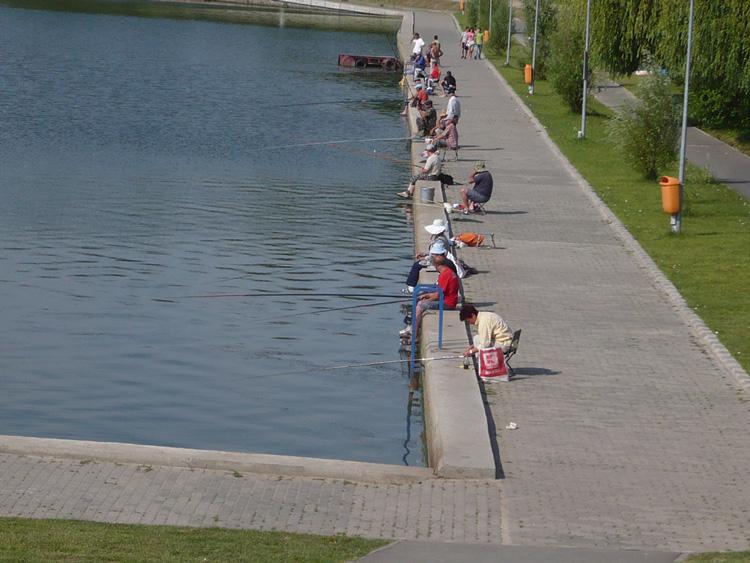 Primăria aşteaptă de la Academia Română acordul privind pescuitul înlacul Ciuperca