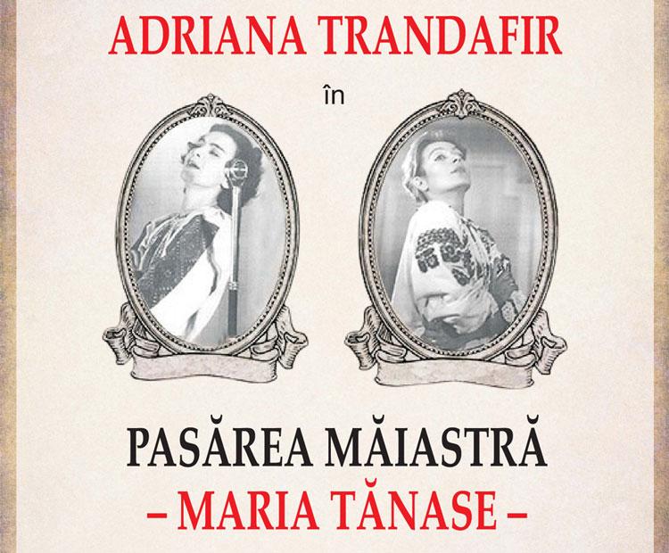 """Adriana Trandafir pe scena Teatrului """"Jean Bart"""", în deschiderea Festivalului de C'Arte Danubius"""