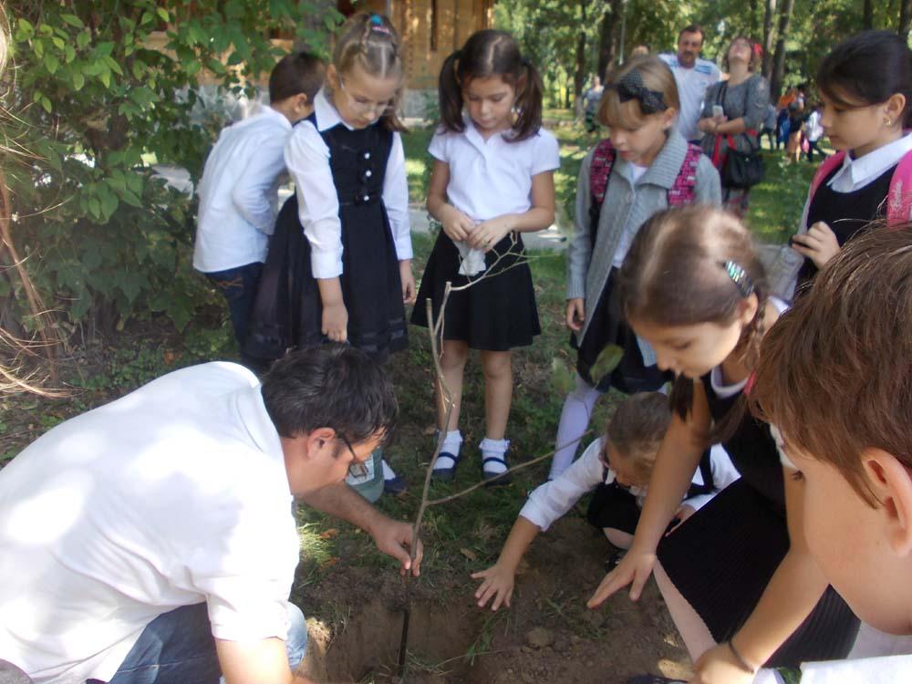 """Şi micuţii de la Şcoala Gimnazială """"Alexandru Ciucurencu"""" au plantat un copac pentru pace"""
