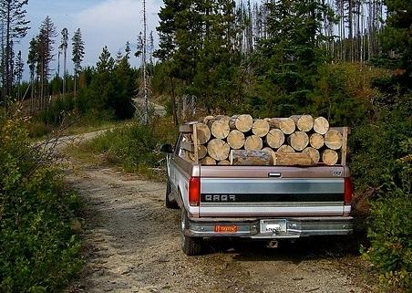 Pensionarii acuză că sunt jecmăniţi de vânzătorii de lemne