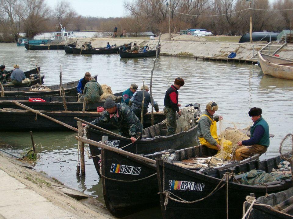 Problemele pescarilor, în coadă de peşte