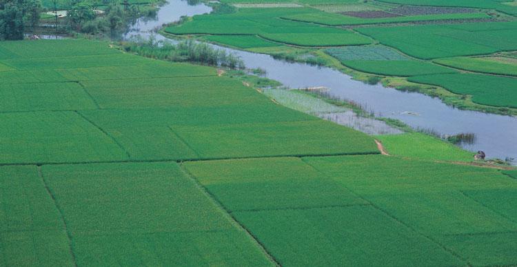 Inventarierea terenurilor, făcută praf în comisiile locale