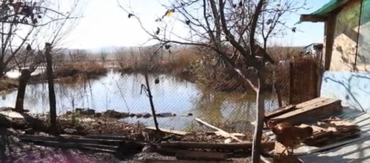 Prefectura aşteaptă de la primăriile Mihai Bravu şi Frecăţei o evaluare oficială a pagubelor produse de ploi