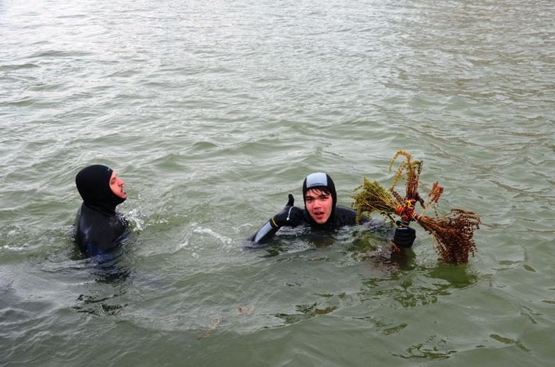 Slujba de Bobotează a adunat mii de tulceni la malul Dunării
