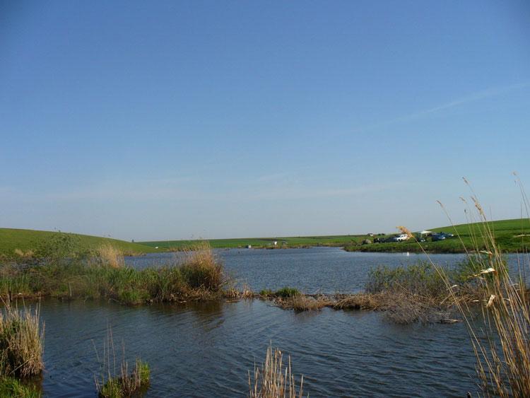Delta Dunării, aproape de colaps ecologic