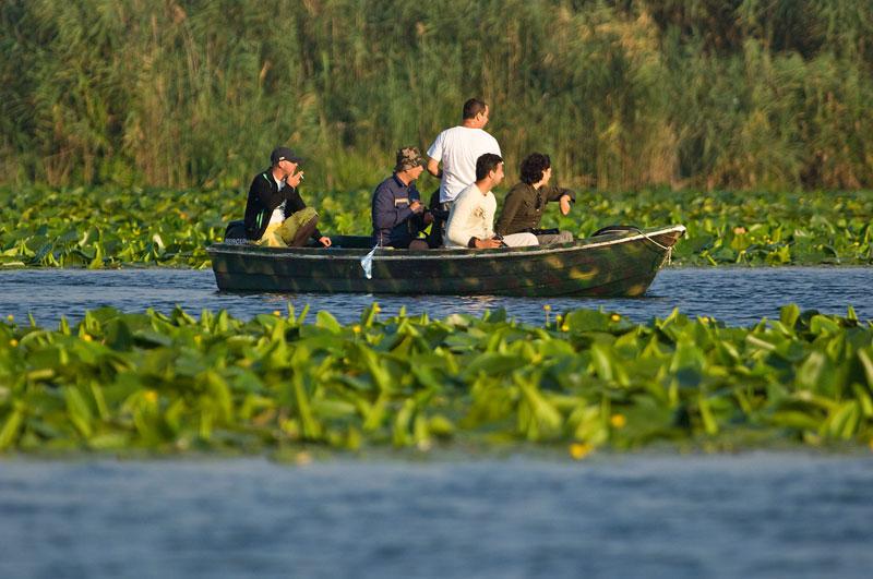 Noi puncte de atracţie în deltă, din toamnă: structuri plutitoare din papură