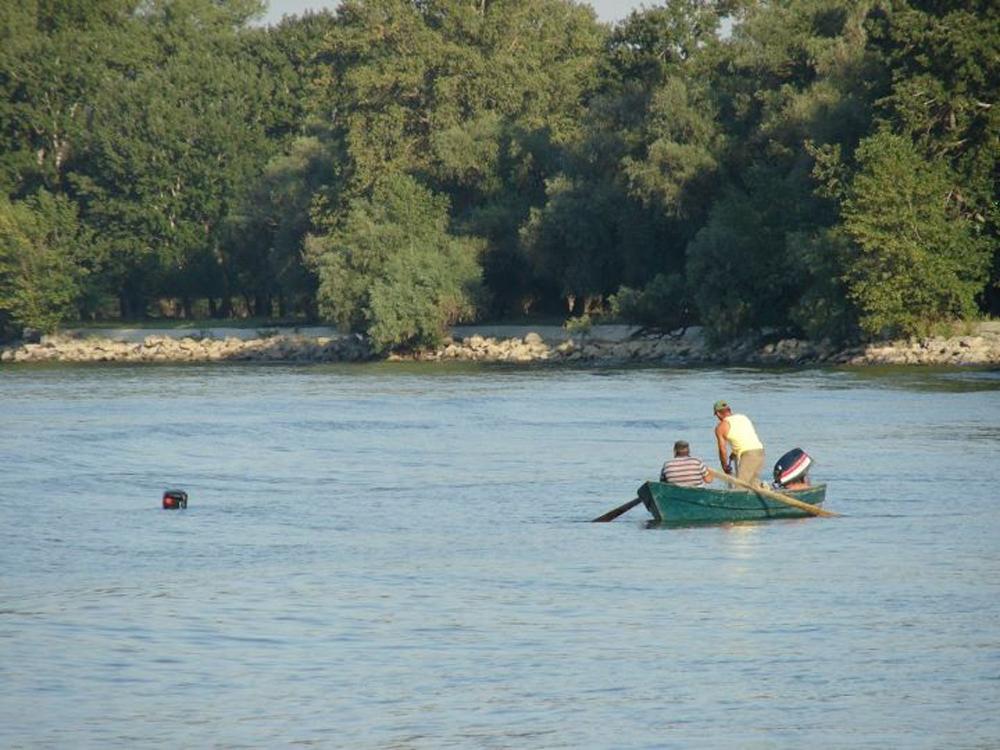 """""""Delta vie"""" – priorităţile lui Ivan Patzaichin  pentru dezvoltarea Deltei Dunării"""