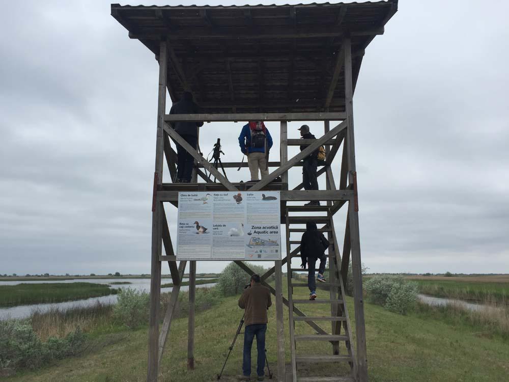 Birdwatching la primul Sanctuar al Păsărilor din România