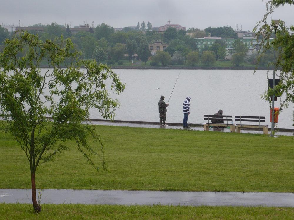 Liber la pescuit pe Lacul Ciuperca