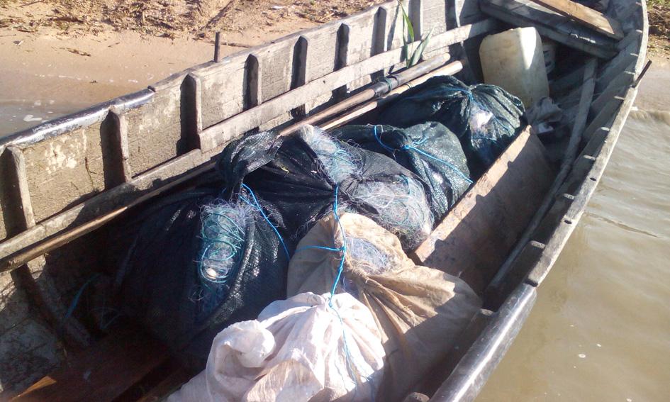 Braconieri prinşi de poliţiştii de frontieră pe lacul Razelm