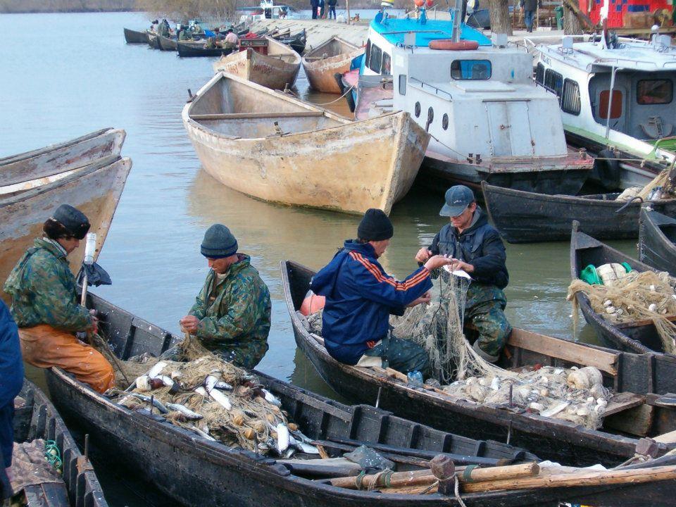 Pescarii din Sfântu Gheorghe spun că vor veni să protesteze cu barca şi babaica în Piaţa Civică!