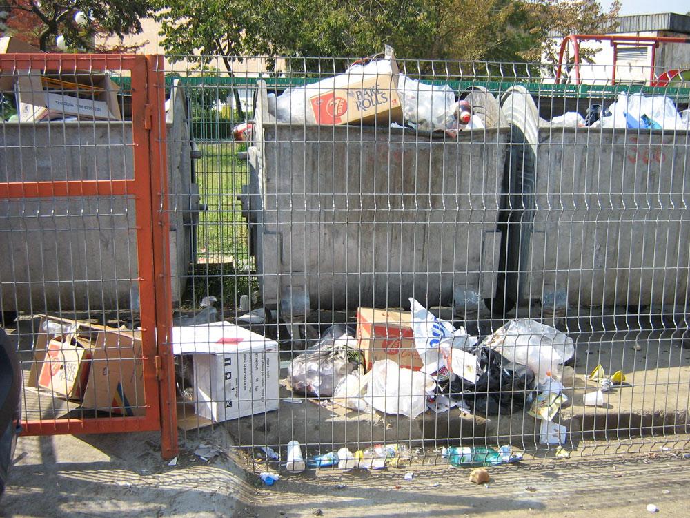 Locatarii din municipiu, avertizaţi că sunt pasibili de amenzi usturătoare dacă aruncă gunoaiele pe lângă tomberoane