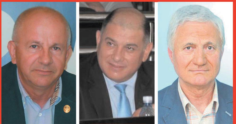 Liberalii Vasile Gudu şi George Şişcu au obţinut câte un mandat de deputat, Ion Ganea (PMP) este senator