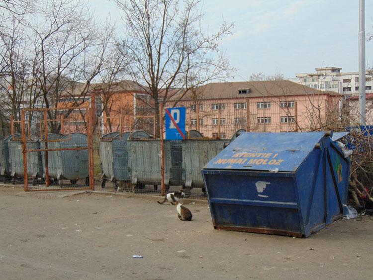Molozul după renovare, subiect de nemulţumire în municipiu