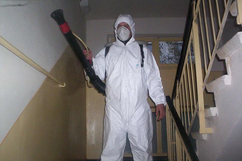 De luni, Începe campania de dezinsecţie, deratizare  şi dezinfectare în municipiu