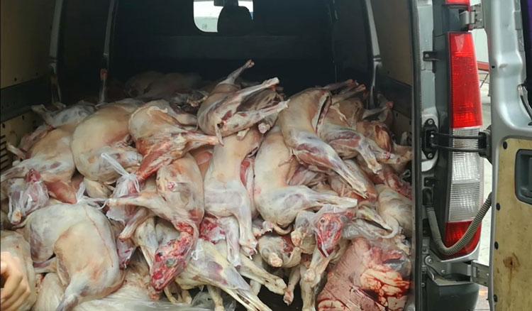 Poliţiştii tulceni au confiscat aproape o tonă şi jumătate de carne de miel