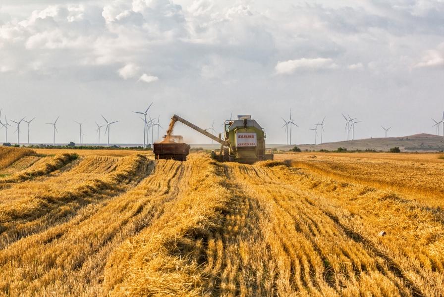 O asociaţie de mediu se implică în concesiunile din Delta Dunării